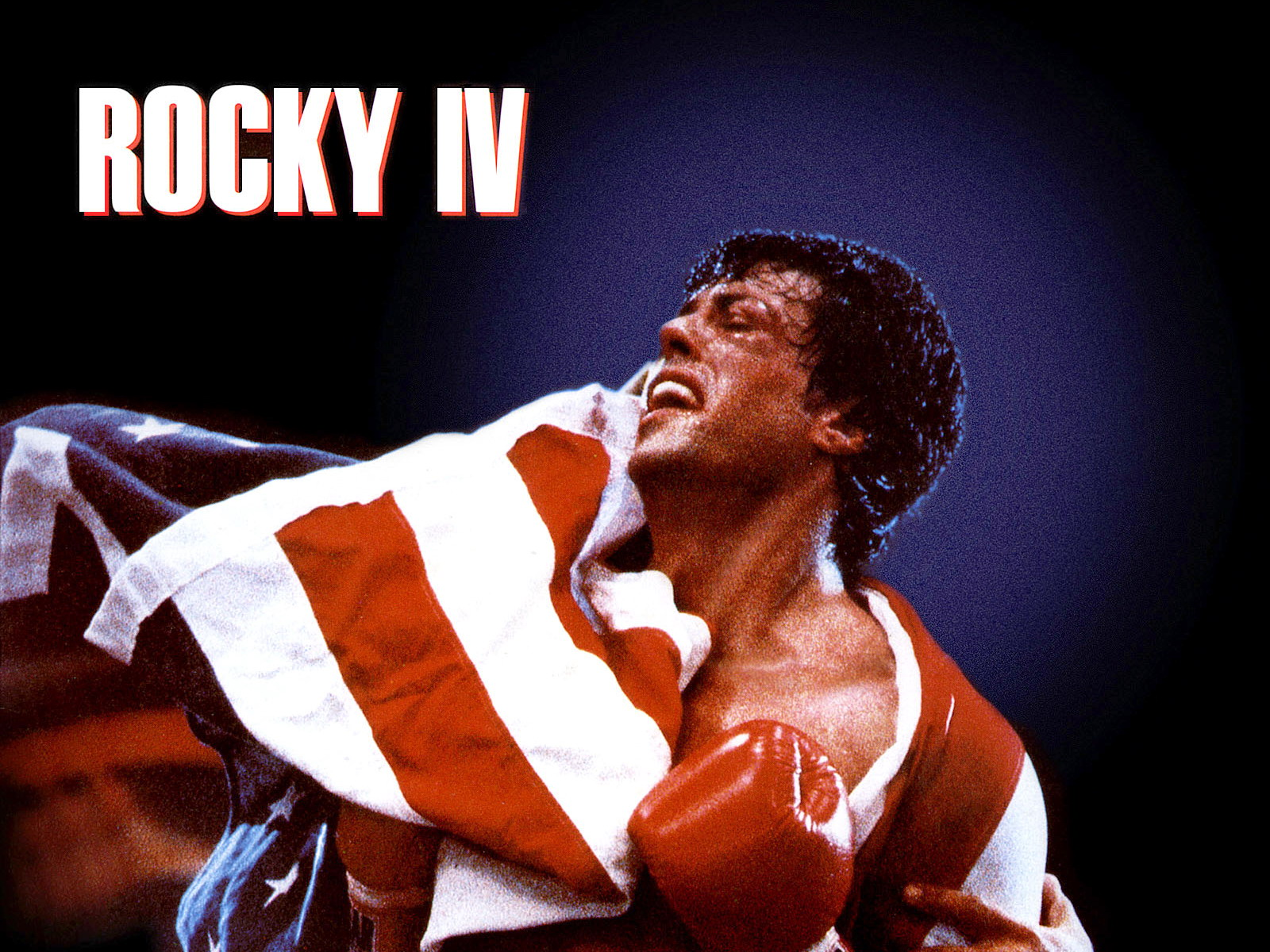Between A Rocky And A Hard Place How Rocky Balboa Taught